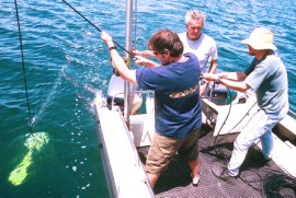 Magnetometer survey carried out during the 2004 Maritime Archaeology Field School at Portarlington, Victoria (photo courtesy of the Maritime Archaeology Program, Flinders University).